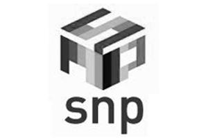 SNP Media-grijs